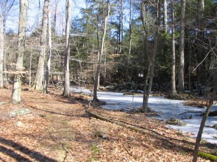 Teatown Lake loop stream