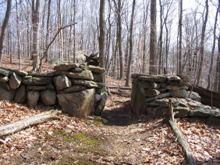 Westchester Wilderness Walk